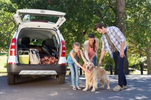 summer driving safety tips, safety tips for driving in summer, family road trip safety tips